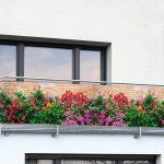 פרטיות במרפסת קטנה מרפסות יפות