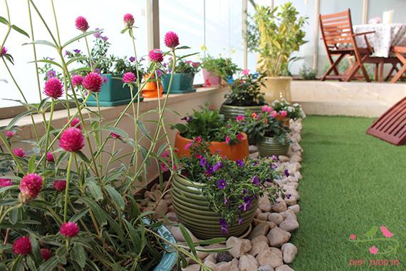 עיצוב גינה ירוקה במרפסת מרפסות יפות עיצוב מרפסות