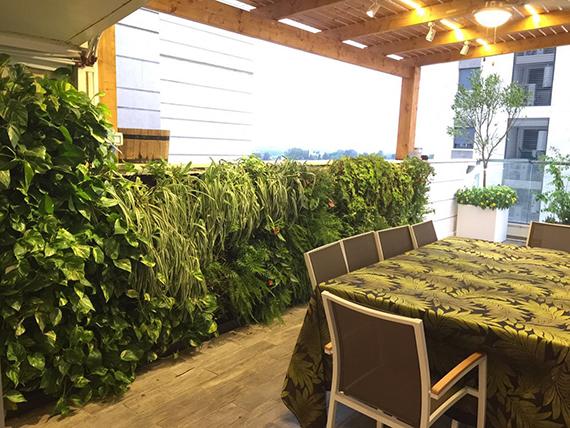 מרפסות יפות עיצוב מרפסת גרין וול הפקת קיר ירוק