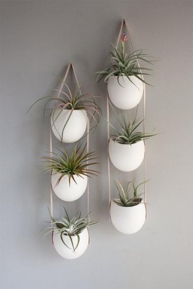 מרפסות יפות צמחים תלויים