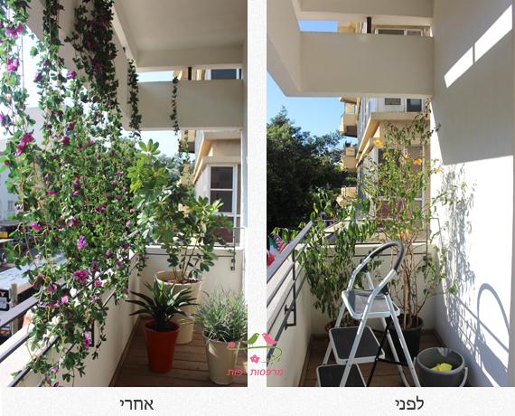 מרפסות יפות לפני אחרי עיצוב מרפסת השמש
