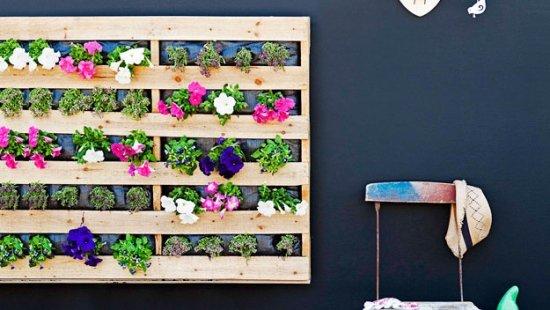 מרפסות יפות עיצוב מרפסת קיר ירוק מפאלט עץ