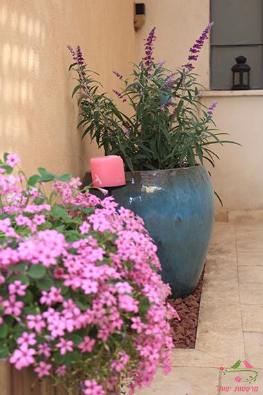שילובי צמחיה מרפסות יפות עיצוב מרפסות לאחר תהליך העיצוב
