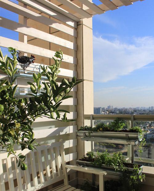 פרגולה במרפסת קטנה מרפסות יפות