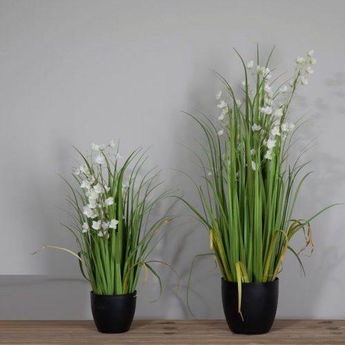עציץ גראס פרחים לבנים מרפסות יפות
