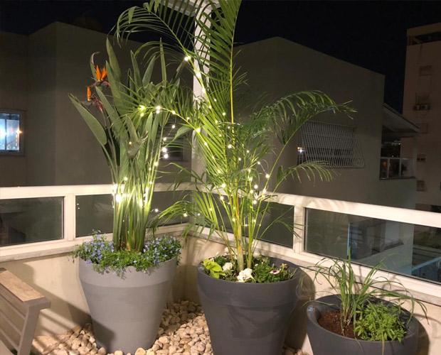 צמחיה בתהליך עיצוב מרפסת של מרפסות יפות