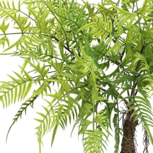 צמחיה ירוקה לבית מרפסות יפות עיצוב מרפסת