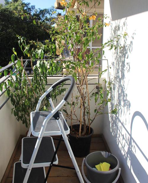 מרפסת תל אביבית לפני עיצוב