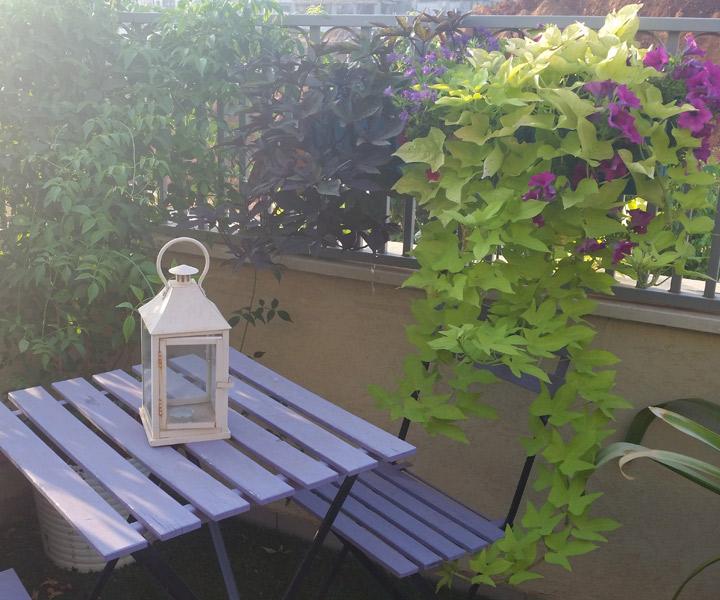 עיצוב מרפסת של ענבר