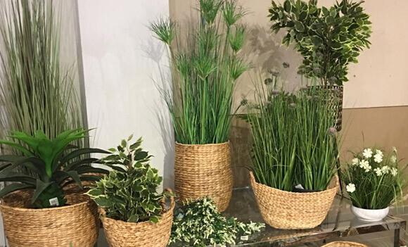 צמחיה מלאכותית לעיצוב הבית והמרפסת