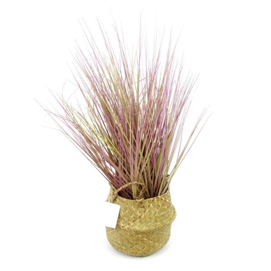 צמחיה מלאכותית בצבע סגול